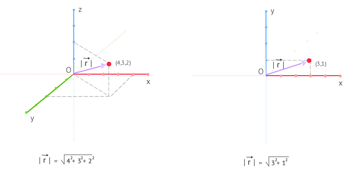 position vector in 3 and 2 dimensions